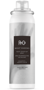 BRIGHT SHADOWS Root Touch-Up Spray: Dark Brown