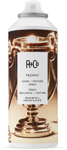TROPHY Shine + Texture Spray